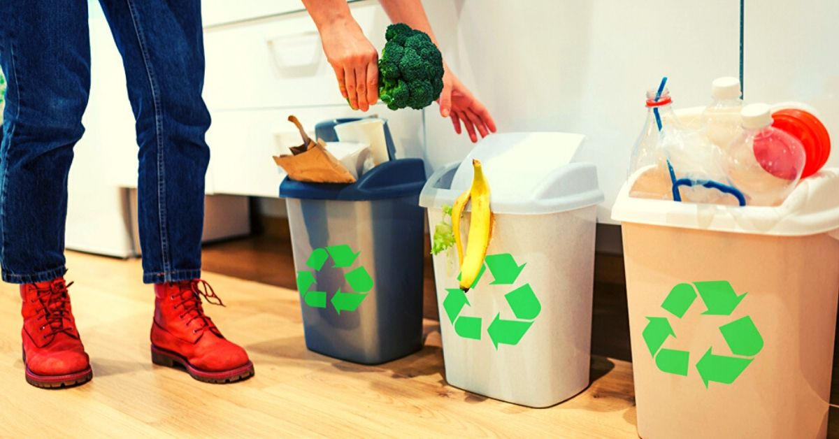 How Can We Properly Organize Our Household Waste?